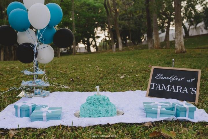 cristell-avila-fotografia-villahermosa-tabasco-mexico-smash-the-cake-1