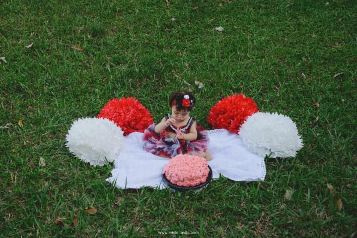 cristell-avila-fotografia-de-cumpleaños-familia-smash-the-cake-mexico-3